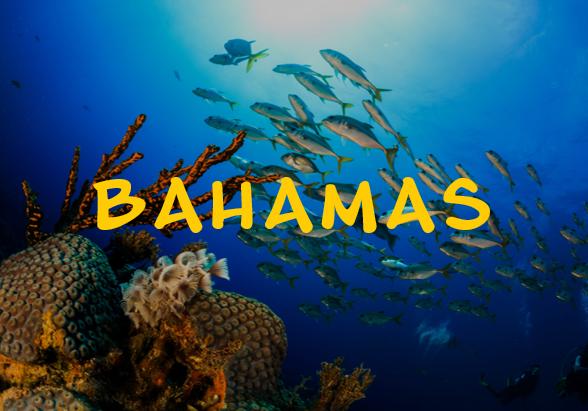 bahamas2.png