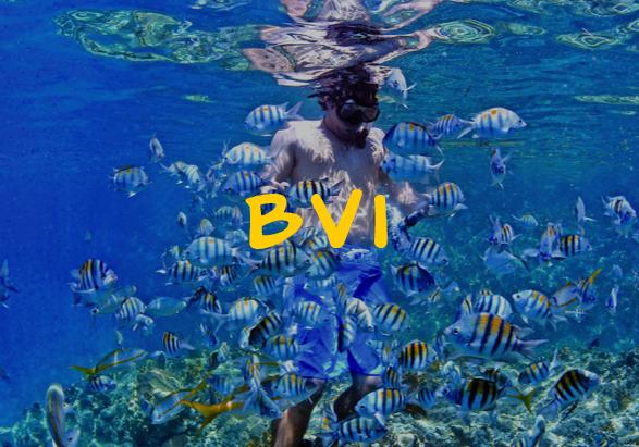 bvi2.png