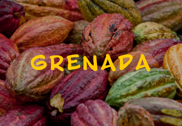 grenada2.png