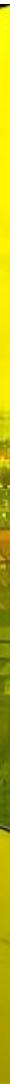 Skærmbillede 2017-04-30 kl. 01.04.45.png