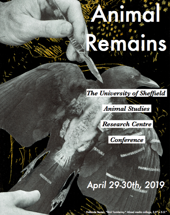 Animal Remains for Webpage.png