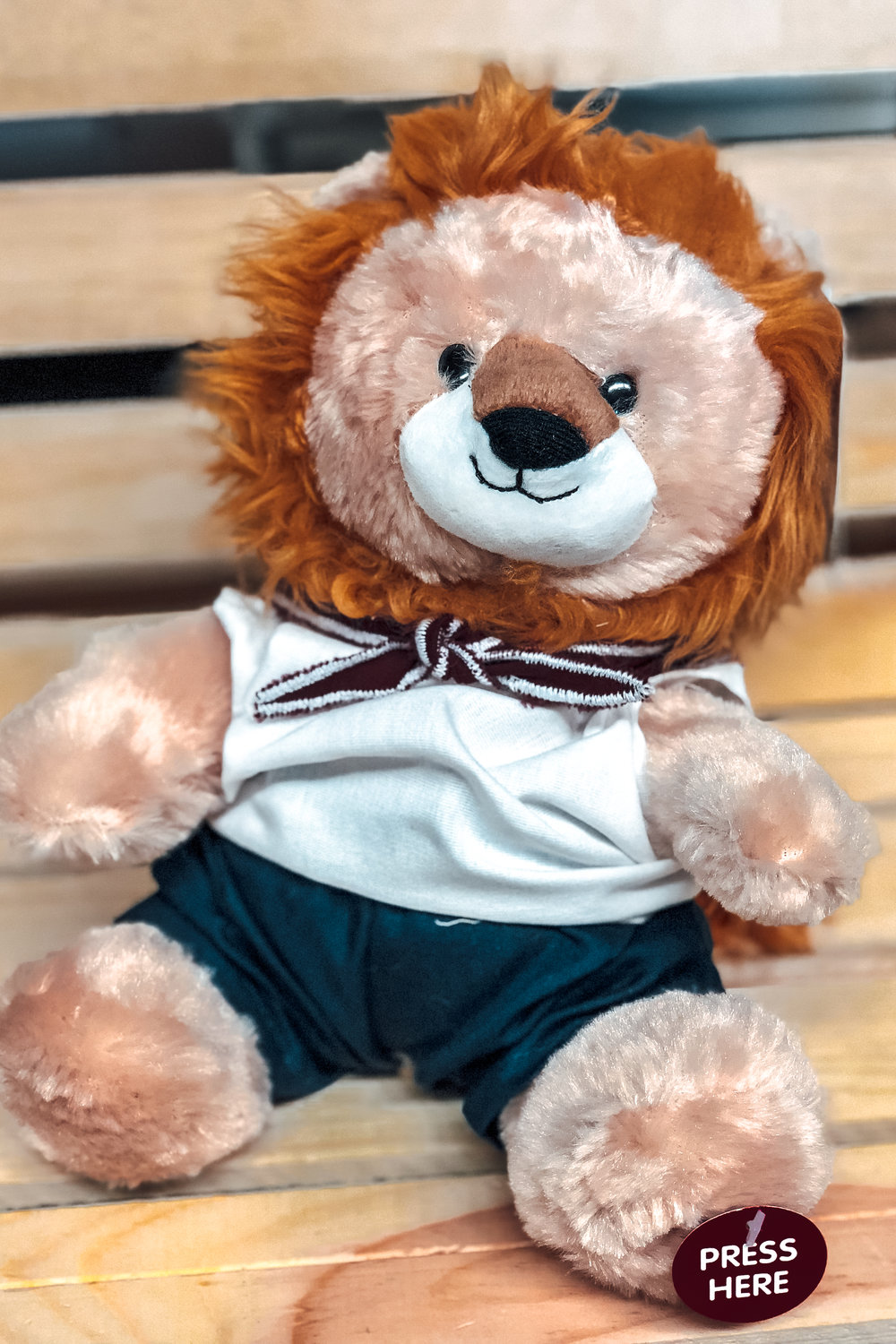 TX YOUTH -  ADVENTURER LION    $15.00