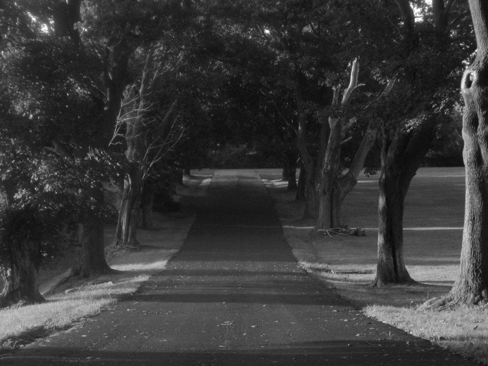 black-and-white-lane-1560988-1280x960.jpg