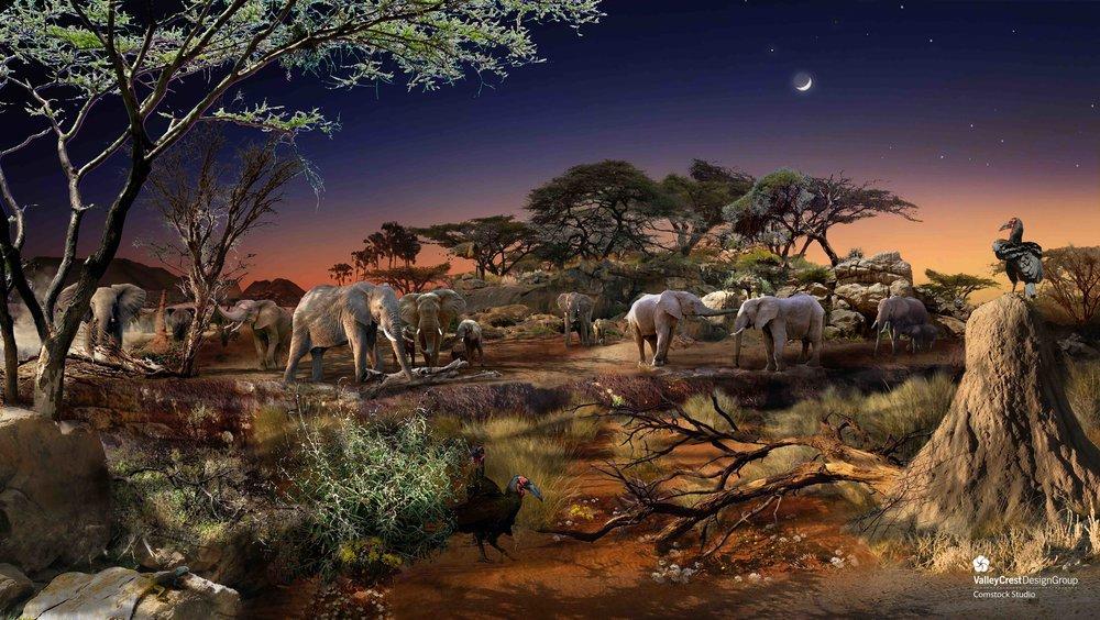 AWPR_Kalahari Safari African Elephant.jpeg