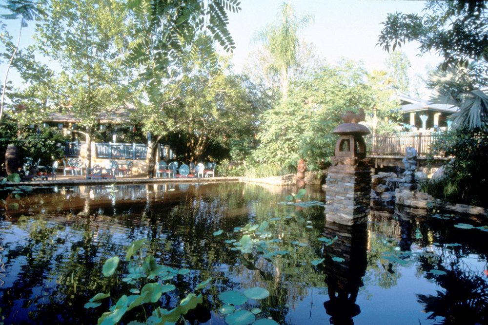 AK_lotus pond 2.jpg