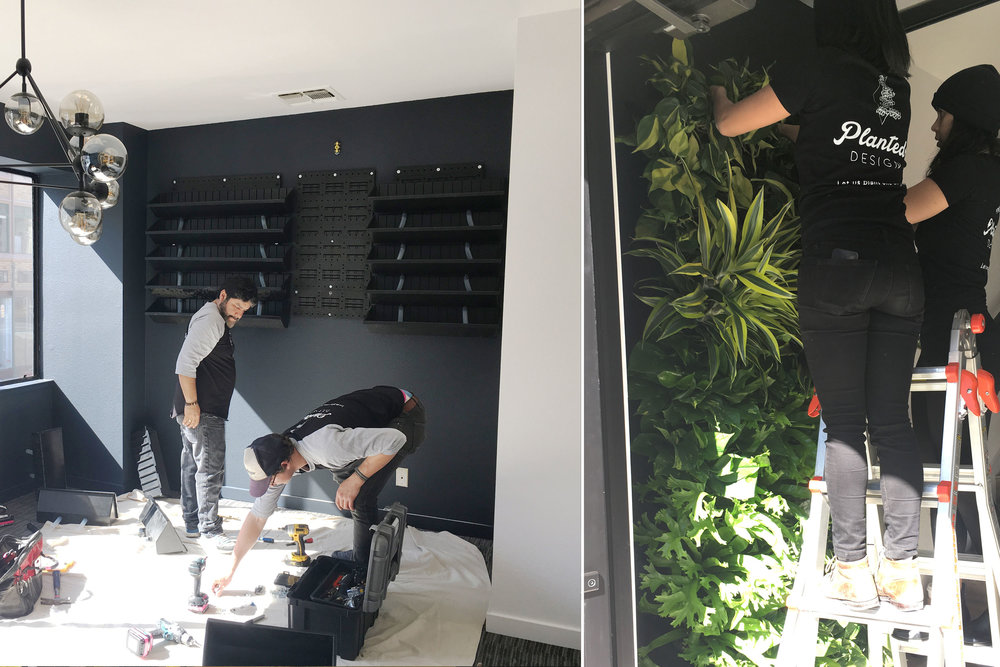 The living walls we designed, with Planted Design are going up on the walls. These will bring in some much needed lush elements into the office, and will be striking to look at without taking up much space.