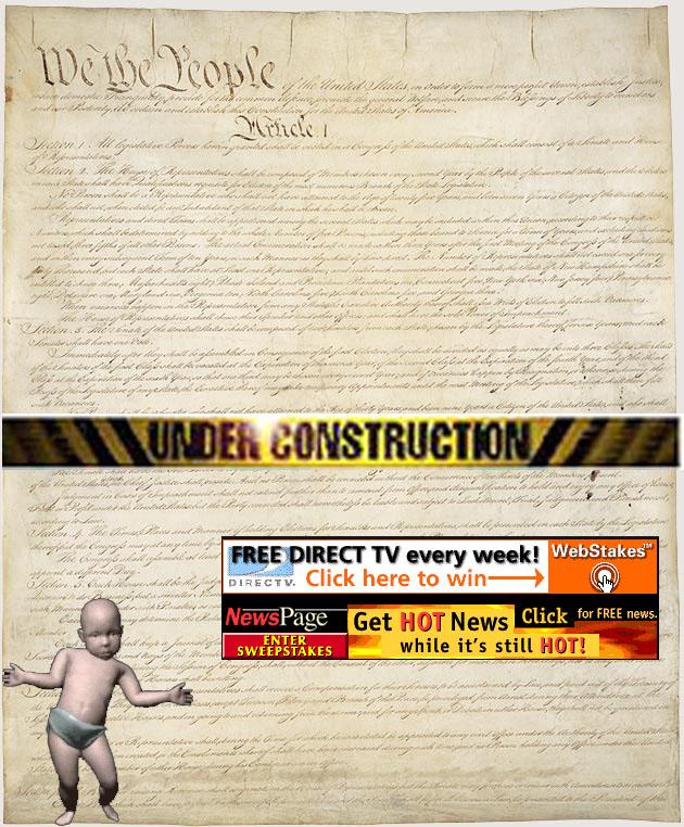 constitution_1_of_4_630.jpg