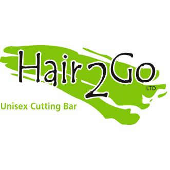 hair2gologo_9_orig.png