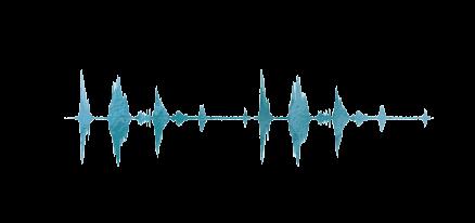 transsoundwave.png