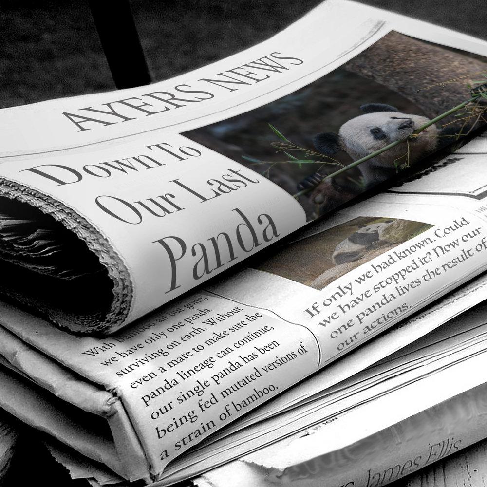 panda_article.jpg