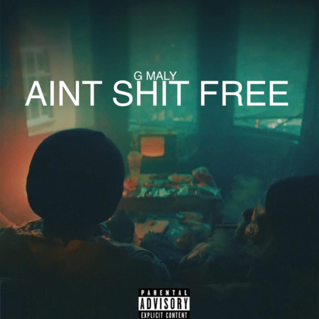 AINT SHIT FREE