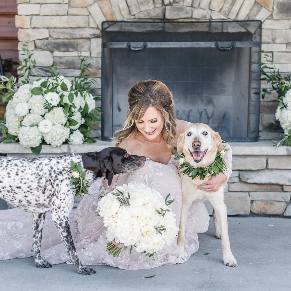 Daily Dog Tag   Best (Wedding) Dogs: Scout & Leyna