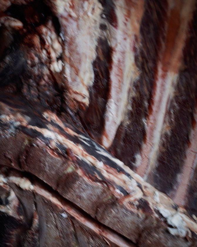 joss-mckinley-cuarto-de-carnes-fotografía
