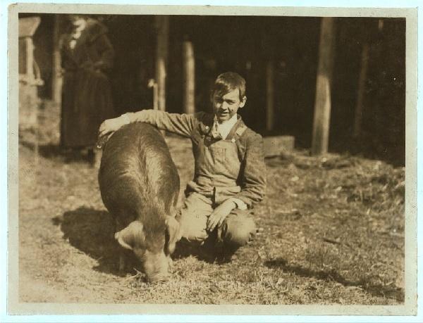Criador de puerco. Guy Baily, premiado, miembro del Club Lewis Co., con su ejemplar. Tiene 14 años. Charleston, West Virginia, octubre, 1921.