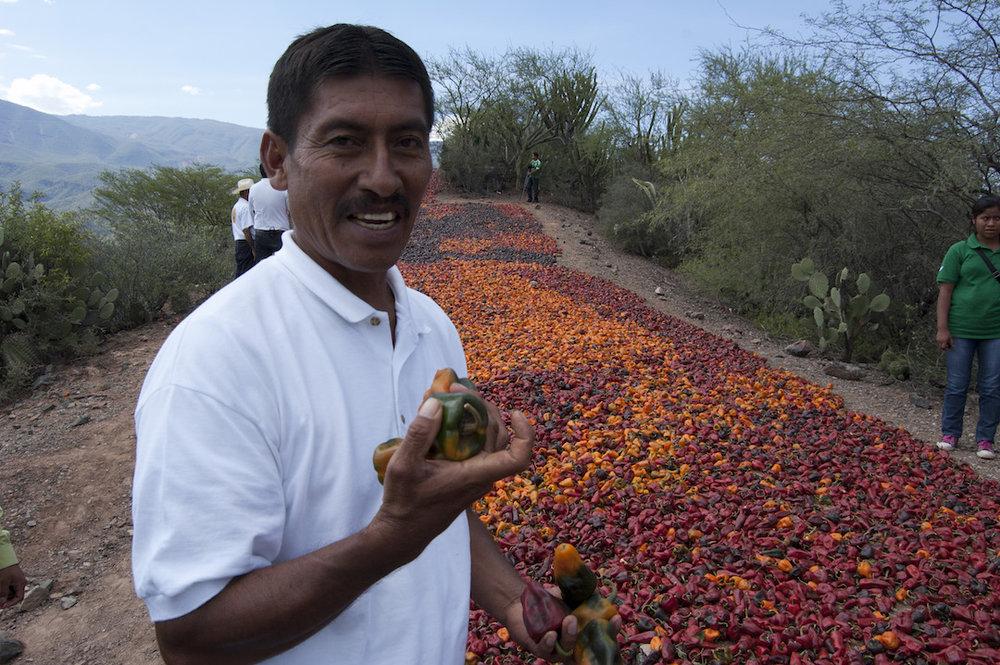 Félix Martínez es el mayor productor de chilhuacle. Foto: L. Laursen