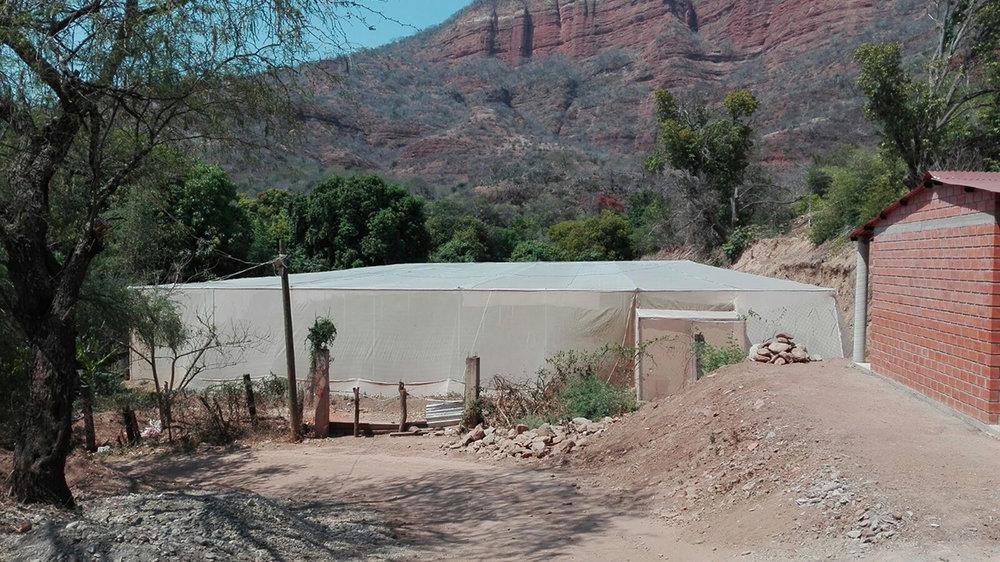 Un invernadero de la familia Martínez en Cuicatlán, en la Cañada de Oaxaca. Foto cortesía Ricardo Muñoz Zurita