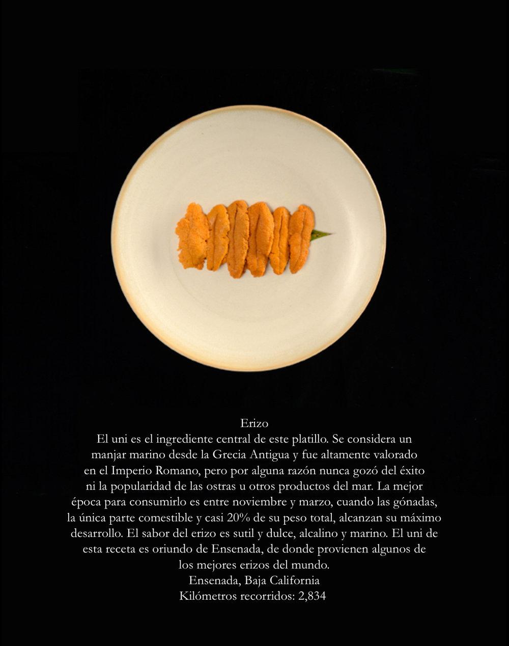 05092018_delplato-rokai ingredientes 02 (erizo) ed.jpg
