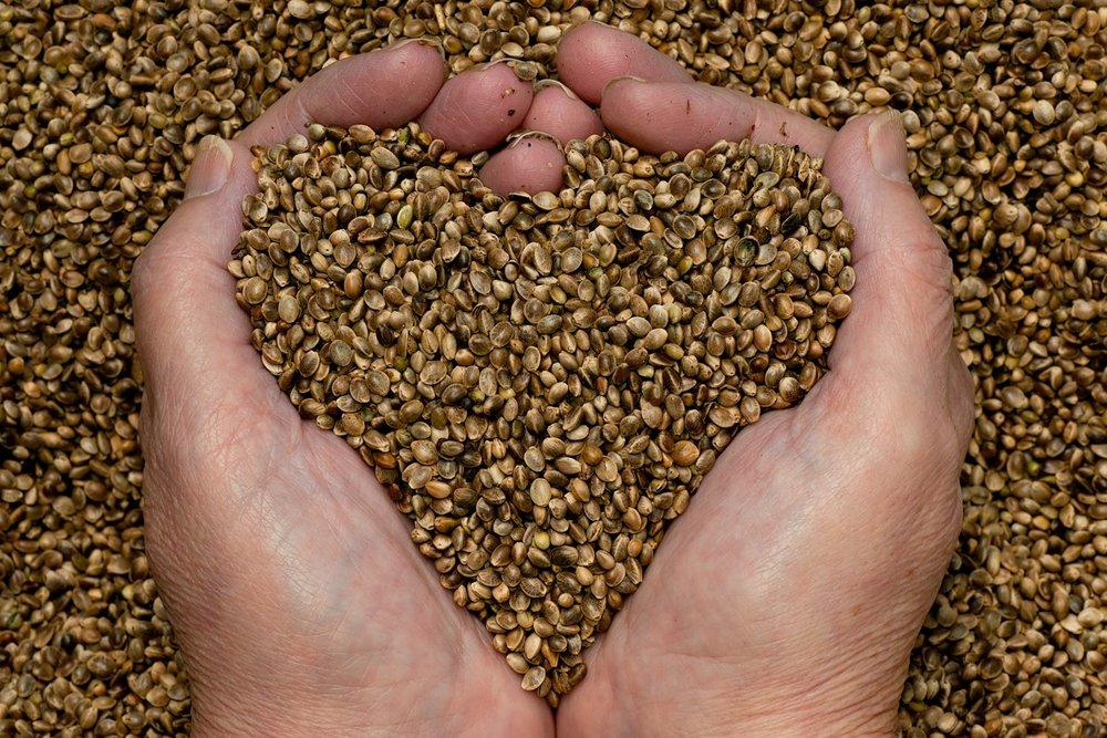 thyme-for-hemp-seeds-hands3-e1418154406147.jpg