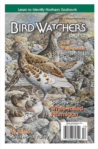 white-tailed-ptarmigan-cover.JPG