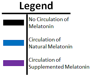 Melatonin overlap legend.png