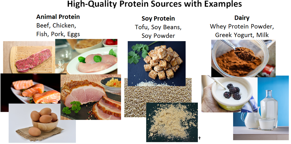 High-quality protein sources
