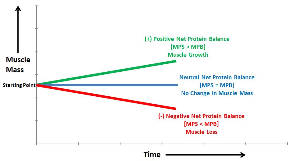 NPB, MPS, and MPB