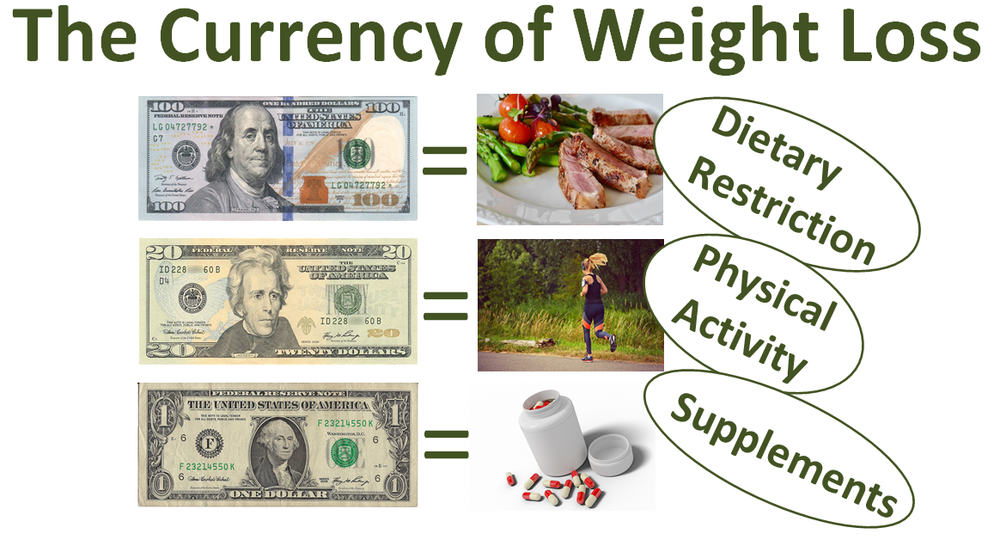 The Currency of Weight Loss RTP.png