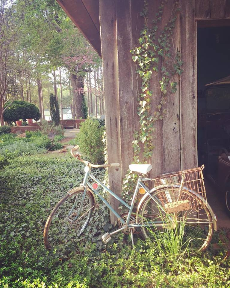 bicycle at garden shed.jpg