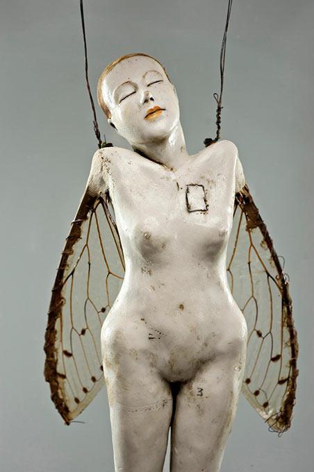 Cicada - 2011