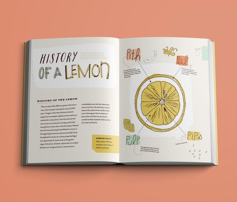 Lemons Spreads3a.jpg