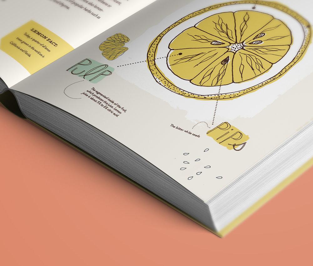 Lemons Spreads8a.jpg