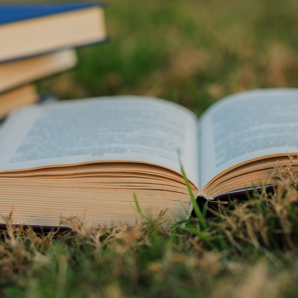 stock-photo-open-book-on-the-grass-with-pile-of-closed-books-on-grass-background-545031388.jpg