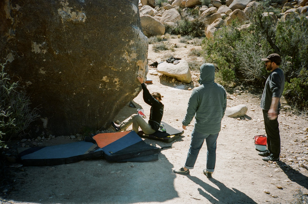 Yabo Starts in Joshua Tree