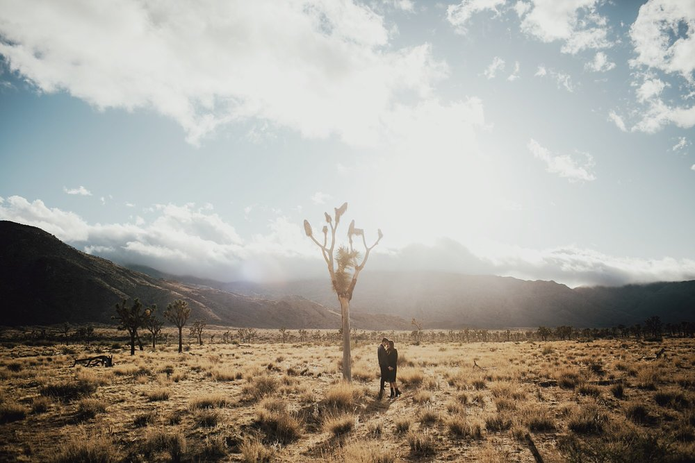 engagement photos in Joshua Tree national park at sunset