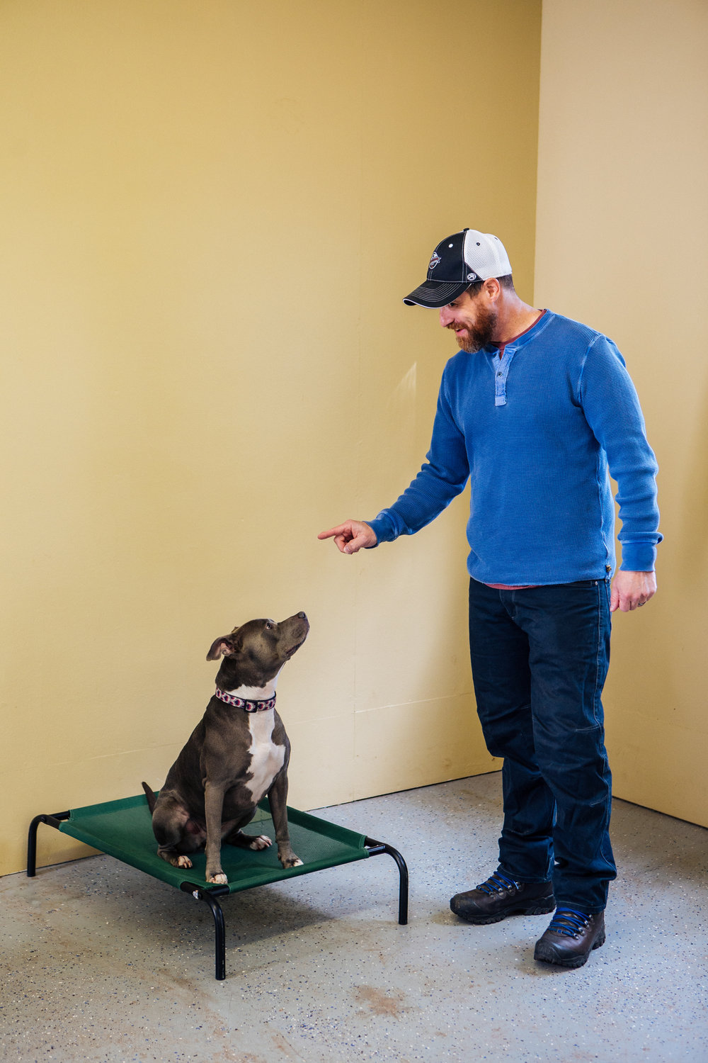 Start your puppy off right - Our puppy obedience class begins the first weekend of November. This class is designed to teach your puppy the basics of obedience such as