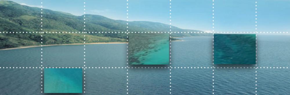 Oceana zoom.png