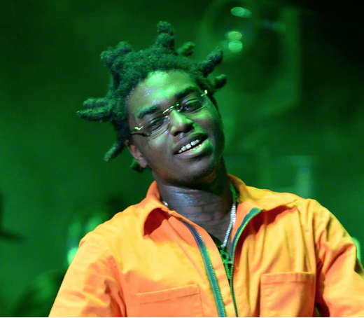 Kodak Black is pushing back against gun charges found in a raid on his house.