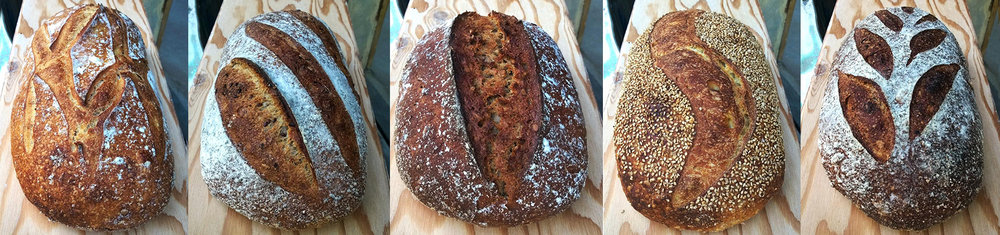 from left: Campagne, Levain, Caraway Rye, Sesame Semolina, Seeded Honey Wheat