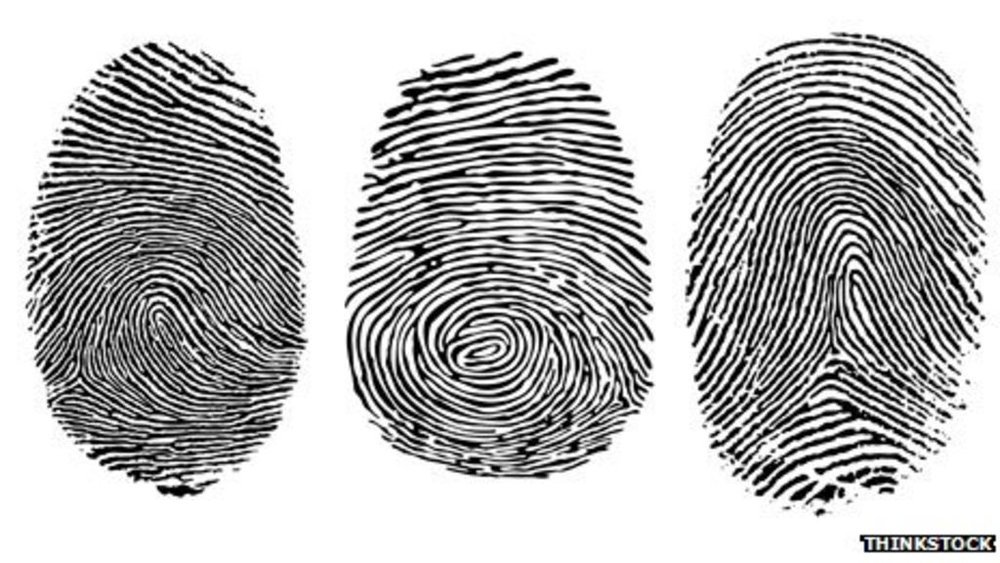 _63146121_fingerprint_types.jpg