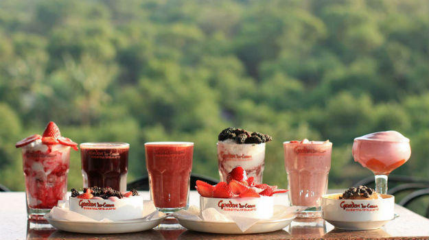 strawberry_festival_mahabaleshwar.jpg