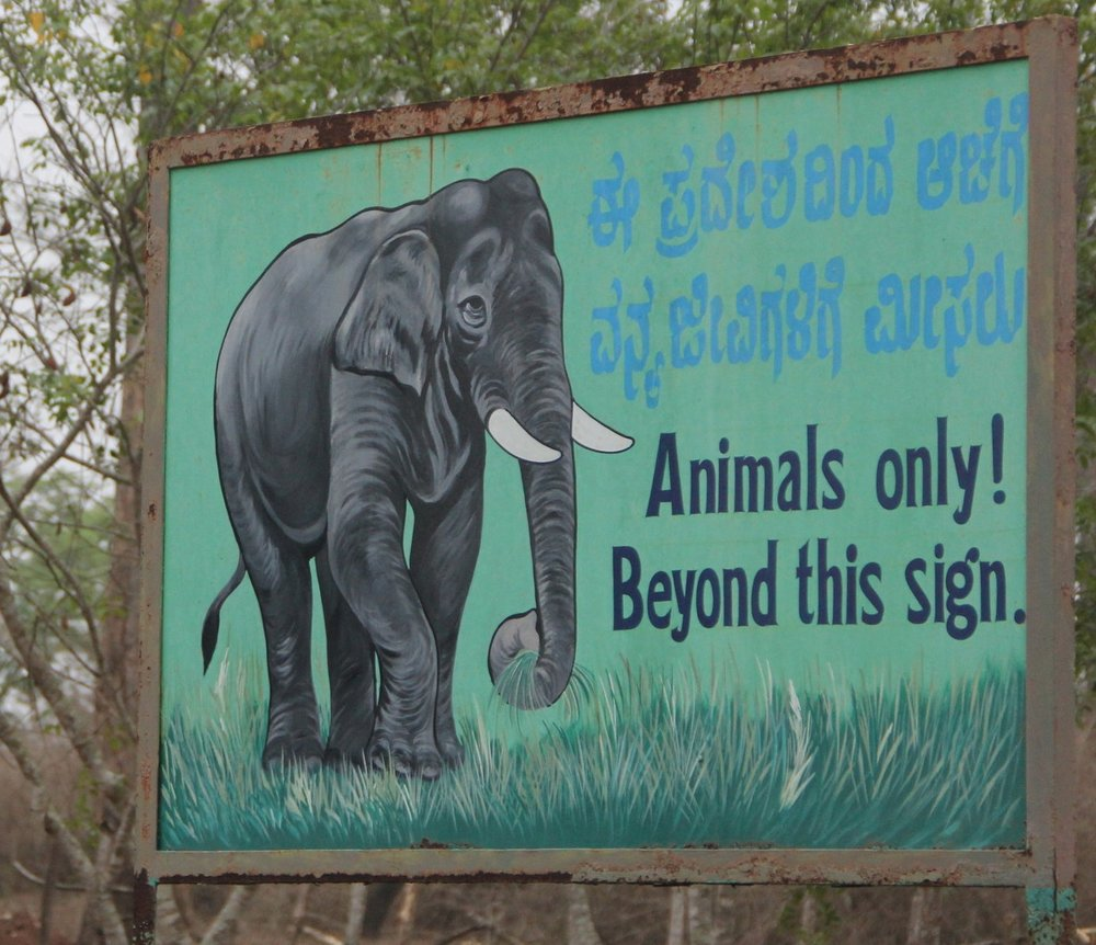 animal sign board, kabini