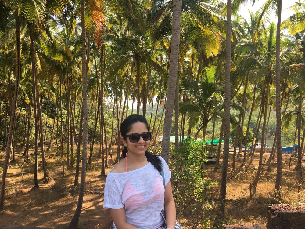 Such pretty landscapes with lots of coconut tree plantations