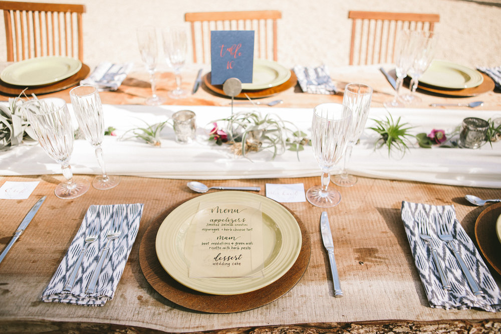 minimal tablescape with airplants.jpg