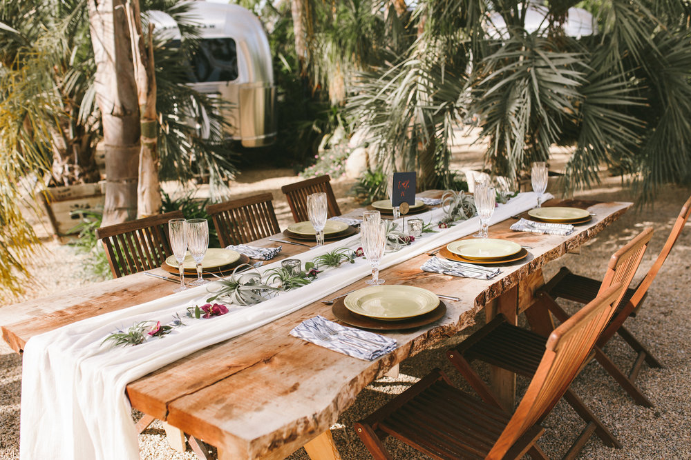 santa barbara wedding with simple tables with airplants and thistles.jpg
