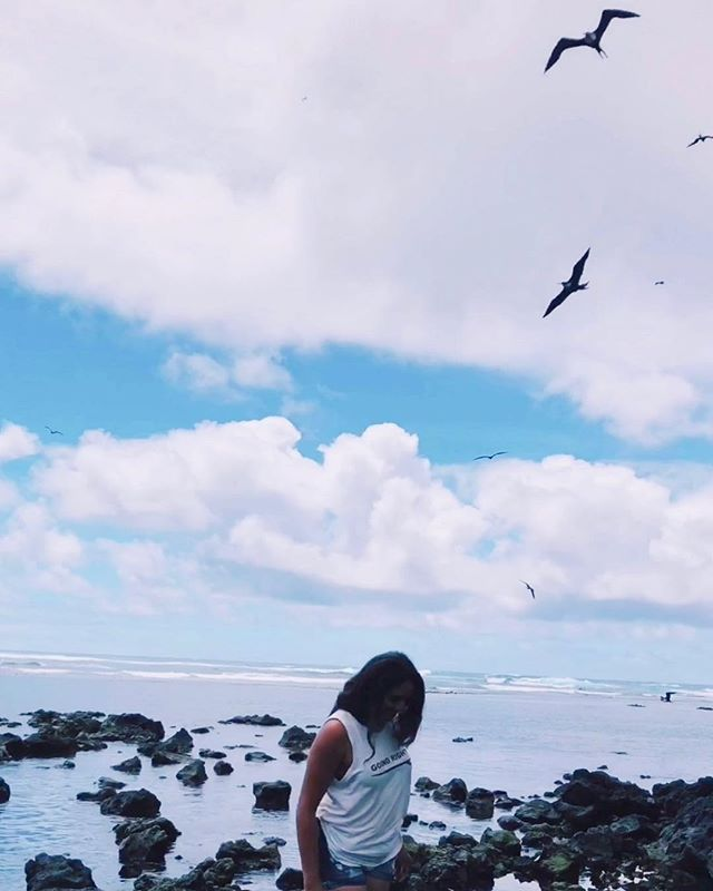 Love this shot I grabbed from one of my videos. If you watch da stories, you already know my love for these majestic manu (birds). ☾ ʻIwa birds hold great symbolism when observing the weather, & ocean.  x a handful of items still in stock on website, at a local girl price 😍
