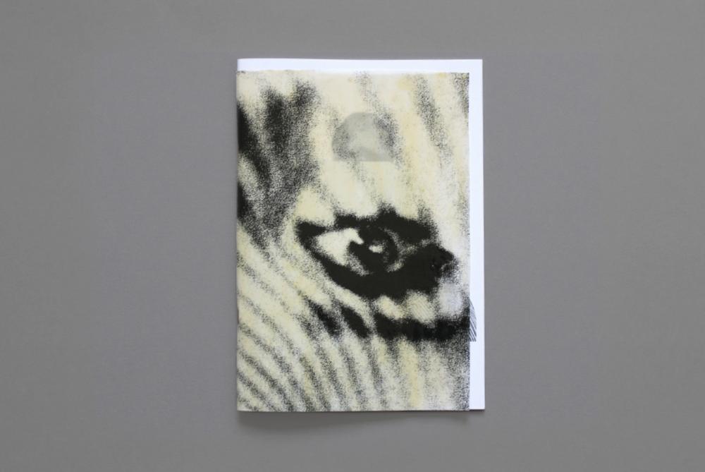 Duplicitous solo publication, 2011