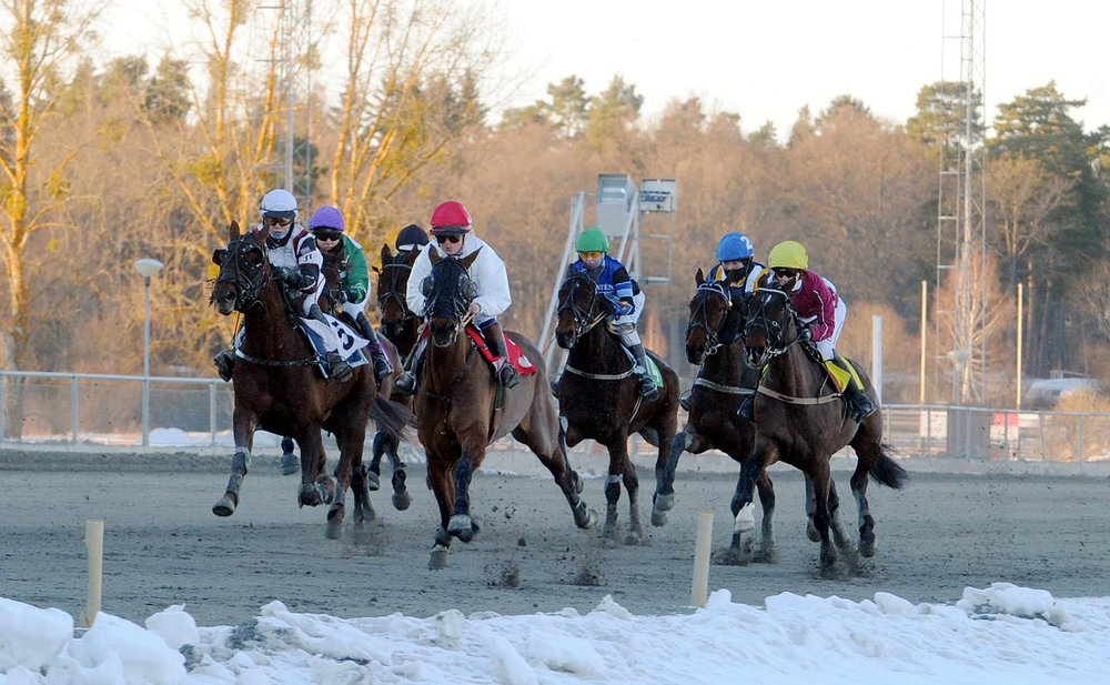 Winter monté racing in Sweden.  Monté is the European name for RUS.