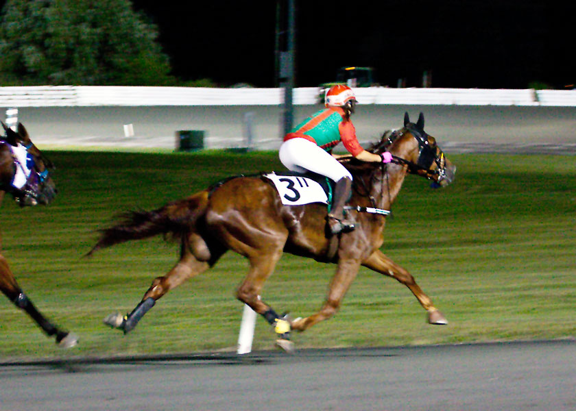 Maria Buchanan at Ocean Downs 2015.  Photo by Clarissa Coughlin.