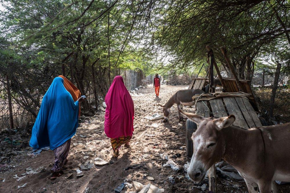 NS_KE_WP_Dadaab82.jpg