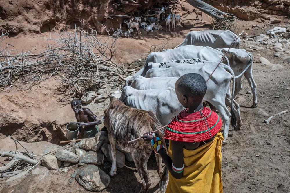 NS_KE_Economist_Samburu29.JPG